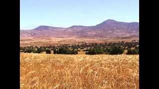 preview picture of video 'EL-ABED - SIDI BOUBEKER - TOUISSIT - ASFOUR, etc ... 11 JUIN 2012.wmv'