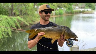 How, Where, When to Catch Carp (Tie an EASY Fly) Fly Fishing