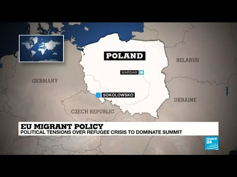 EU Migrant policy: Are the Visegrad countries united in their stance?