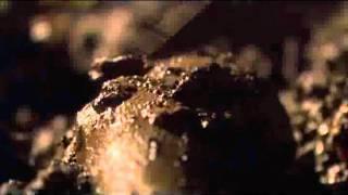 Bonekickers Blu-ray trailer (2011)