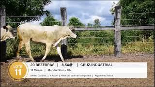 20 BEZERRAS CRUZ.INDUS