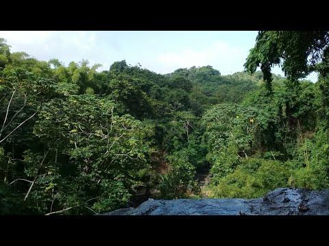 Grenada: Mt. Carmel Falls