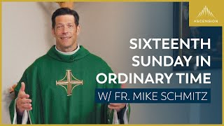 Sixteenth Sunday in Ordinary Time — Mass with Fr. Mike Schmitz