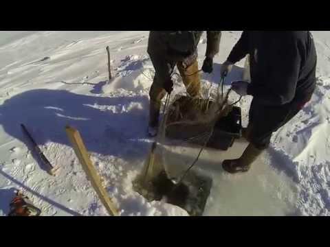 Guardare trucchi del 2016 su pesca