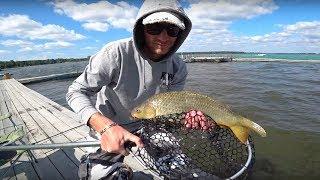 Отчет о рыбалке на шарташе