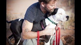 КАК ПРОДЛИТЬ ЖИЗНЬ ВАШЕЙ СОБАКЕ Советы для владельцев собак HOW TO EXTEND THE LIFE OF THE DOG
