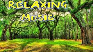 Relaxační hudba -cvičení