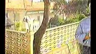 Bocairent, Incendi Serra de Mariola de l´any 1994