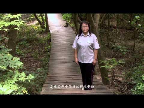 [行動解說員]壽山國家自然公園-臺灣獼猴 (2013)