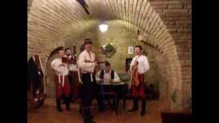 U muziky su ja chlap - Cimbalova muzika Podluzi