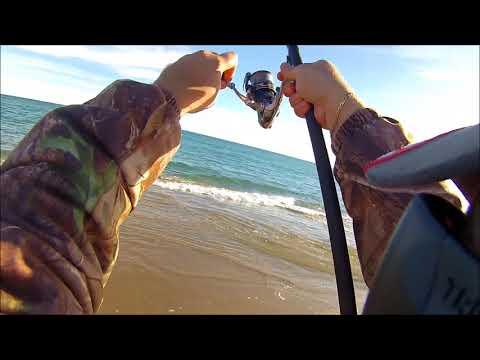 Appoggi su Volga e pesca di video