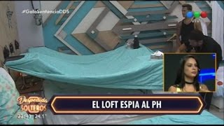 El loft se entera lo que pasó en el PH en la semana 9 - Despedida de Solteros