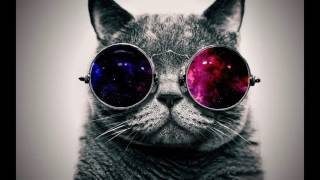 Cool And Funny Wallpapers For You Desktop.
