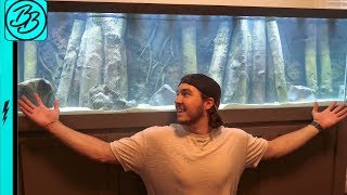 I Put the AMAZON JUNGLE in My GIANT TANK...