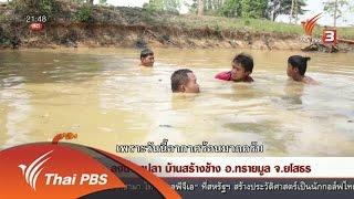 ที่นี่ Thai PBS - นักข่าวพลเมือง : ลงน้ำหาปลา บ้านสร้างช้าง อ.ทรายมูล จ.ยโสธร (9 พ.ค. 59)