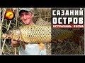 Ловля сазана весной / Карась и сазан на донку / Рыбалка на острове в Астрахани