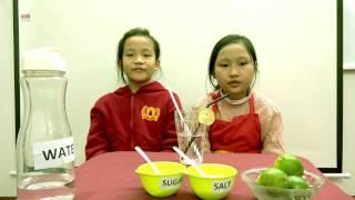 [WSI] B1.1 Thảo Nguyên & Lâm Oanh - - Pre level 1