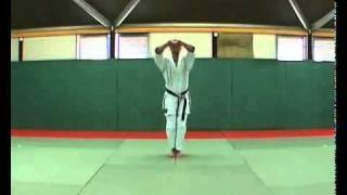5  Bassai Dai Kata  Kumite Bunkai Didier Lupo