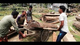 Tough To Find Out, Loading on Van and Cutting to Saw Machine With 4 Workers।Village sawmill Asia