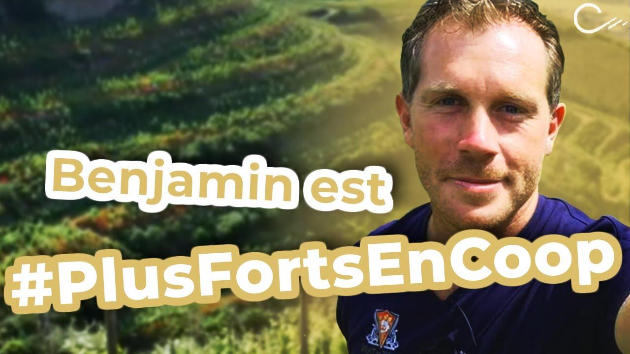 Aidé par sa coopérative, l'arboriculteur devient viticulteur