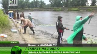 Правила рыбалка на озерах курганской области