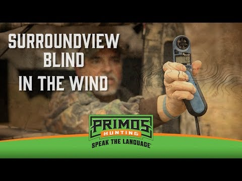 Surroundview in the Wind video thumbnail