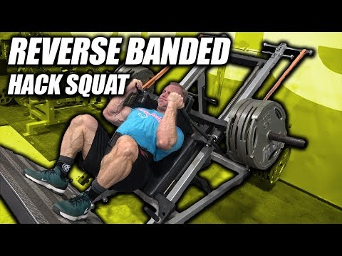 Exercise Index - Reverse Banded Hack Squats