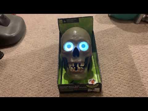 Gemmy Scary Skull