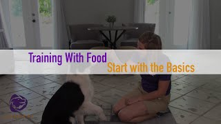 Training Your Dog With Food