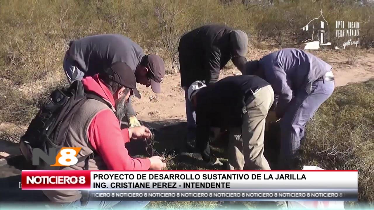 PROYECTO DE DESARROLLO SUSTANTIVO DE LA JARILLA