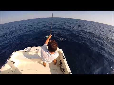 Dove andare a pesca ad Akhtuba