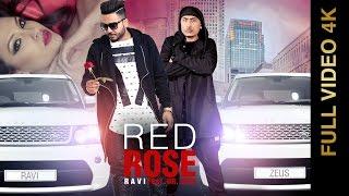 Red Rose  RAVI
