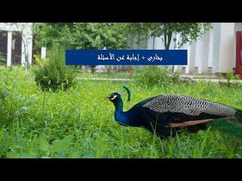 فلوق رحلة أوزباكستان مدينة بخارى