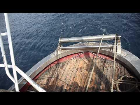 Il karalat riporta su pesca