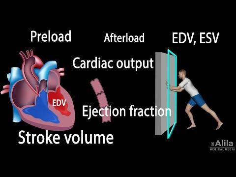 Médicaments pour abaisser la tension artérielle
