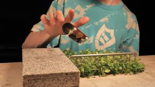Fingerboarding with Music