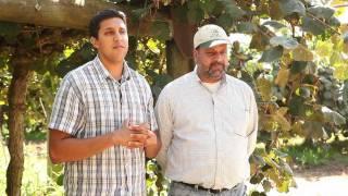 J.T. and Jasbir Kullar, California Kiwifruit Farmers