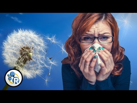Why Do People Get Allergies?
