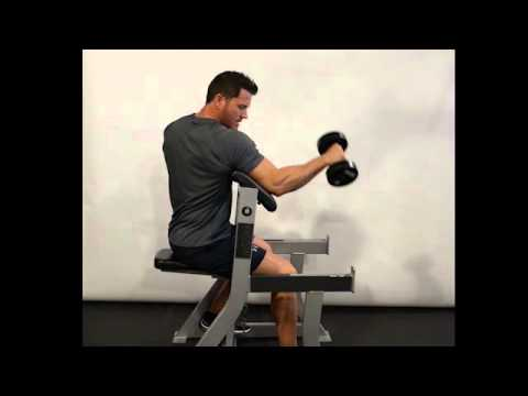 Bicep Preacher Reverse Curl (Dumbbell) - Seated/Single Arm