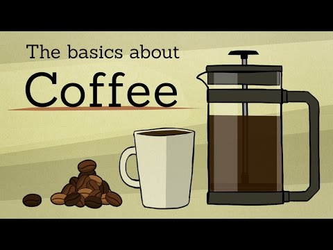 The basics about: Coffee