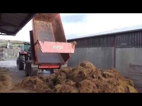 Unloading bales with Masssey Ferguson 398 and Rossmore loader