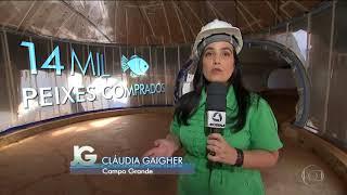 Jornal da Globo: Aquário Pantanal