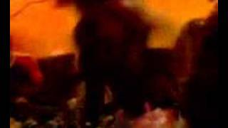 preview picture of video 'diesel show avec st met de aaron'