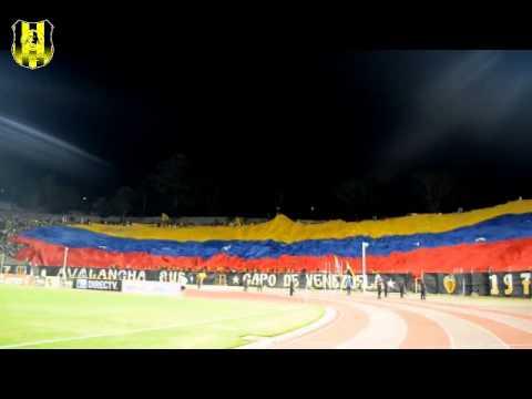 """Dvo. Táchira 1 Yaracuyanos FC 0 26/01/2013 (AvSur)"" Barra: Avalancha Sur • Club: Deportivo Táchira"