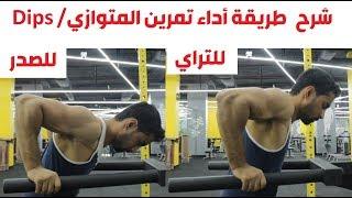 شرح طريقة أداء تمرين المتوازي / Dips - سلسلة كمال أجسام للمتبدئين - 10