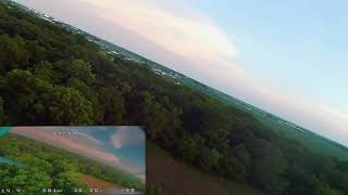 Above the canopy. (beginner FPV freestyle)