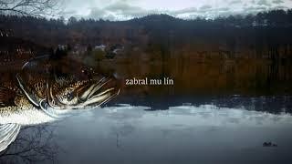 Video TRAUTENBERK tanzmetal - Chyť a pust (lyrics)