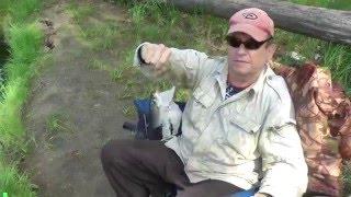 Рыбалка в брыкином бору