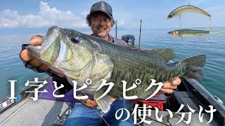 【バス釣り】″I字″と″ピクピク″の使い分けについて。線と点で広範囲を効率的に釣る方法 / 加藤誠司