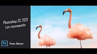 208038Je peux vous fournir Adobe Photoshop cc 2021 Premium + Clé(version complète)